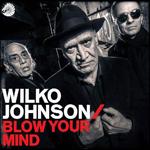 Band - Wilko Johnsen