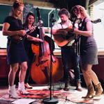 Band - Velvet Joe & The Bluegrass Diamonds