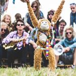 Band - Roots Rising